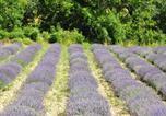 Location vacances Saint-Maurice-d'Ibie - La Magnanerie-1