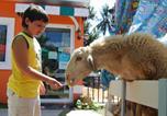 Hôtel Maret - The Memories Hotel Beachside & Sheep Farm Koh Samui Lamai-3