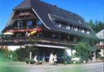 Hôtel Hinterzarten - Hotel Silberdistel-2