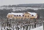 Hôtel Jászapáti - Borhotel Sziluett Farkasmály-3