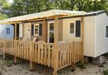 Camping  Acceptant les animaux Largentière - Camping Saint Amand-4