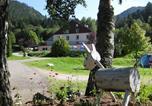 Camping  Acceptant les animaux Vosges - Domaine Du Haut Des Bluches-2