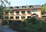 Hôtel Nittel - Waldhotel - Landgasthof Albachmühle-1