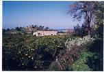 Location vacances Rossano - Agriturismo Fellino-4
