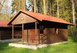 Camping avec WIFI République tchèque - Chatová osada Luh Sušice-3