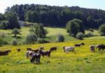 Location vacances Mossautal - Barenhof-4