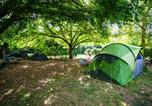 Camping Moncrabeau - Camping Sites et Paysages Saint-Louis-3