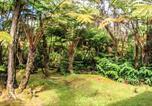 Location vacances Volcano - Apapane Lodge by Hawaii Volcano Vacations-2