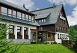 Hôtel Klingenthal - Ferienhotel Mühlleithen-2