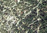 Location vacances Idyllwild - Fern Valley at Idyllwild by Quiet Creek Vacation Rentals-1