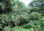 Location vacances Chulumani - Hotel Cabanas Paradise-2