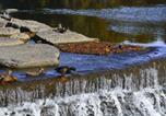 Location vacances Toronto - Magwood Forest & Humber River B&B-4