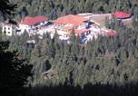 Hôtel Μετσοβο - Hotel Tzoumerka-3