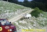 Location vacances Forino - Agriturismo La Roccia-3