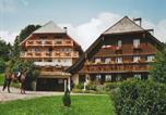 Location vacances Dachsberg (Südschwarzwald) - Vogelsang-4