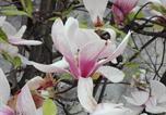 Location vacances Cascina - La Magnolia-1