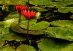 Location vacances Durgapur - The Garden Bungalow-4