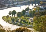 Camping  Acceptant les animaux Allemagne - Knaus Campingpark Rhein-Mosel/Koblenz-1