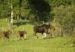 Location vacances Bighorn No. 8 - Bearberry Guest Ranch-3